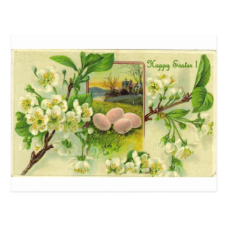 VINTAGE APPLE BLOSSOMS AND EGGS GREETINGS POSTCARD
