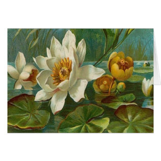 Vintage, Aquatic Flower, Wife Birthday Greeting Card