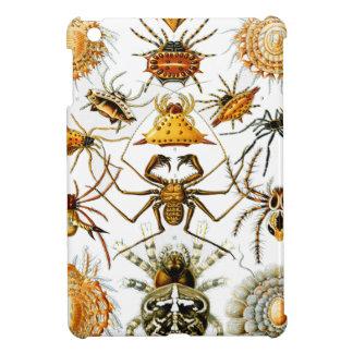 Vintage Arachnida Spiders Old Illustration iPad Mini Covers