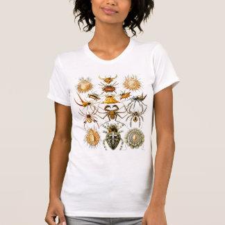 Vintage Arachnida Spiders Old Illustration T-shirt