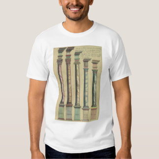 Vintage Architecture, the 5 Architectural Orders T-shirts