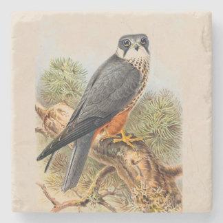 Vintage Art Eurasian Hobby Illustration Stone Coaster