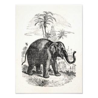 Vintage Asian Elephant Personalized Elephants Photo Art