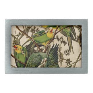 Vintage Audubon Parrot Belt Buckle