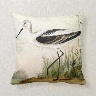 Vintage Avocet Birds, Marine Life Shorebirds Throw Cushion