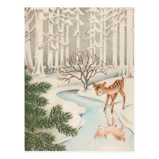 Vintage Baby Deer Drinking Postcard
