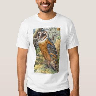 Vintage Barn Owl Painting Shirt