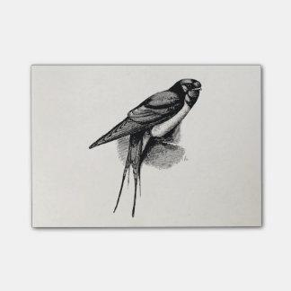 Vintage Barn Swallow Swift Bird Illustration Post-it Notes