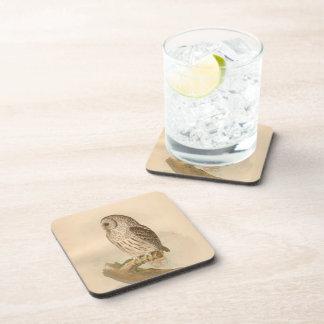 Vintage Barred Owl Illustration Drink Coasters