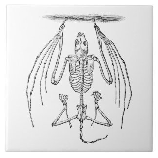 Vintage Bat Skeleton - Bats and Halloween Template Ceramic Tile