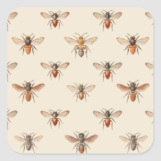 Vintage Bee Illustration Pattern Square Sticker