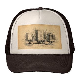 Vintage Beekeeping Beehives Beehive Mesh Hats