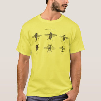 Vintage Bees Bee Honey Scientific Illustration T-Shirt