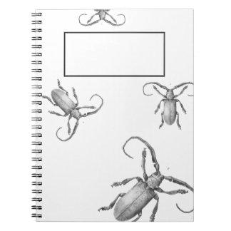 Vintage beetle illustration notebook