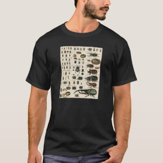 Vintage Beetle Illustration T-Shirt