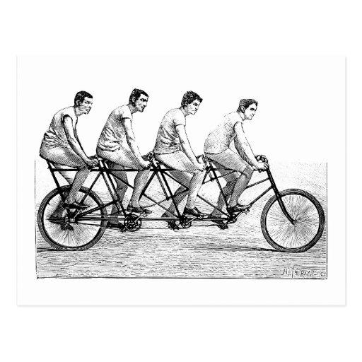 Vintage Bicycle - Cycling Cyclist Bike Race Postcard