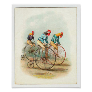 Vintage Bicycle Poster, Pennyfarthing Roosters Poster