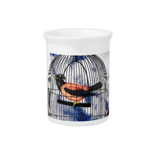 Vintage bird in the cage pitcher