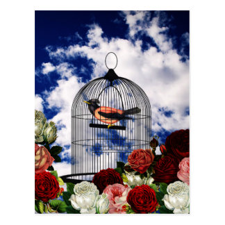 Vintage bird in the cage postcard