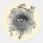 Vintage Bird Nest Illustration Round Sticker