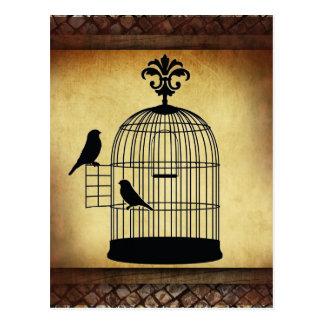 vintage birdcage stamp. postcard