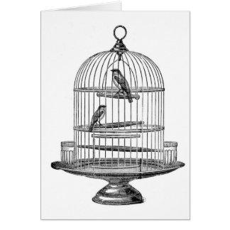 Vintage Birdcage with Birds...notecard Card