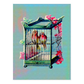 Vintage Birds and Bird Cage Postcard