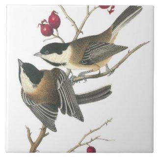 Vintage Birds Ceramic Tile
