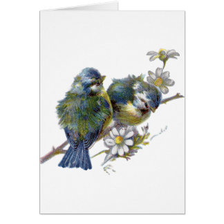 Vintage Birds, German Birthday Card