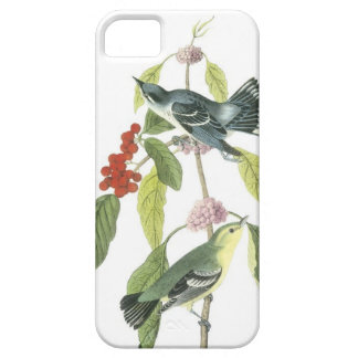 Vintage birds on a branch...i phone 5 case
