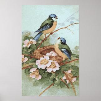Vintage Birds Print