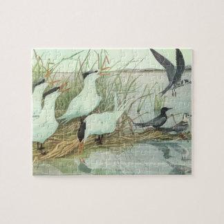 Vintage Birds, Shorebirds in a Marsh by Fuertes Jigsaw Puzzle