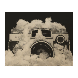 Vintage Black and White Camera In Snow Wood Wall Decor