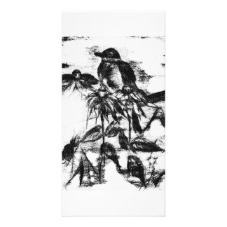 Vintage black and white robin card customised photo card