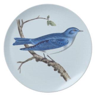 Vintage Blue Bird Melamine Plate