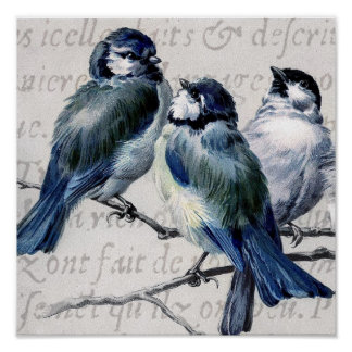 Vintage Blue Birds Collage - Customized Bluebirds Posters