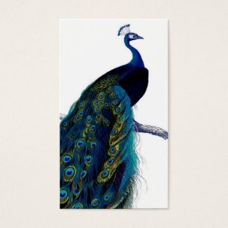 Vintage Blue Elegant Colorful Peacock