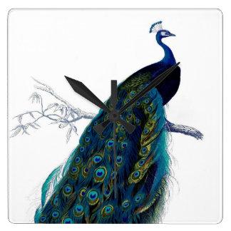 Vintage Blue Elegant Colorful Peacock Clocks