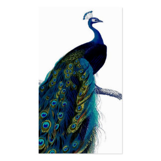 Vintage Blue Elegant Colorful Peacock Pack Of Standard Business Cards