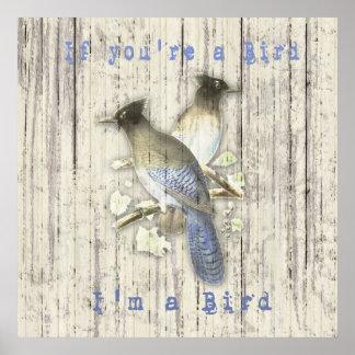 Vintage Blue Jays ~ If you're a Bird I'm a Bird Poster