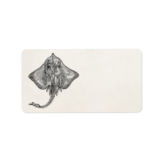 Vintage Bordered Ray Stingray - Aquatic Template Address Label