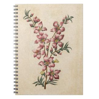 Vintage Botaical Floral Almond Blossom Notebook