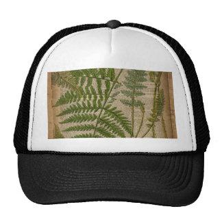 vintage botanical art newspaper Decorative ferns Trucker Hats