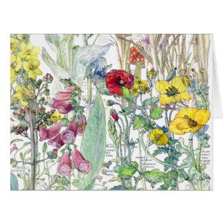 Vintage Botanical Clover Wildflower Flowers Card
