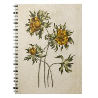 Vintage Botanical Floral Aconite Illustration Notebooks