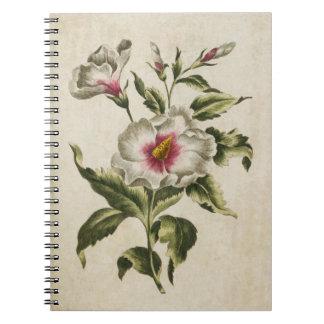 Vintage Botanical Floral Althea Frutex Notebook