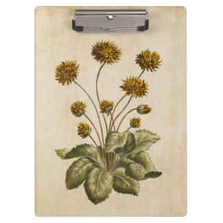 Vintage Botanical Floral Crowfoot Illustration Clipboard