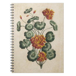 Vintage Botanical Floral Double Cresses Notebooks