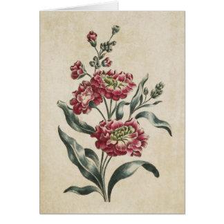 Vintage Botanical Floral Double Stock Illustration Card