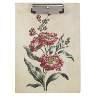 Vintage Botanical Floral Double Stock Illustration Clipboard